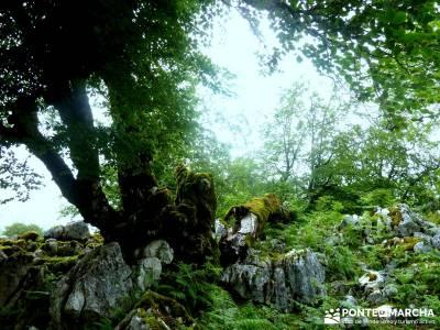 Descenso Sella - Lagos de Covadonga; viajes camino de santiago; senderismo hoces del duraton;viajes